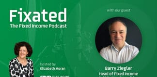 PODCAST: Hybrids with Barry Ziegler - Head of Fixed Income at Bell Potter Securities